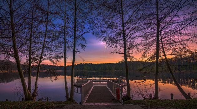 Фото бесплатно док, пейзаж, деревья