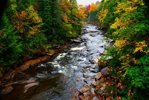 Photo free Blackwater Falls State Park, river, autumn