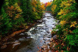 Фото бесплатно Государственный парк Блэкуотер-Фоллс, река, осень