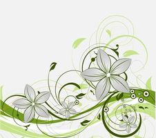 Бесплатные фото текстура, вектор, узор, цветы