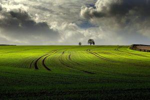 Фото бесплатно закат, поле, холм