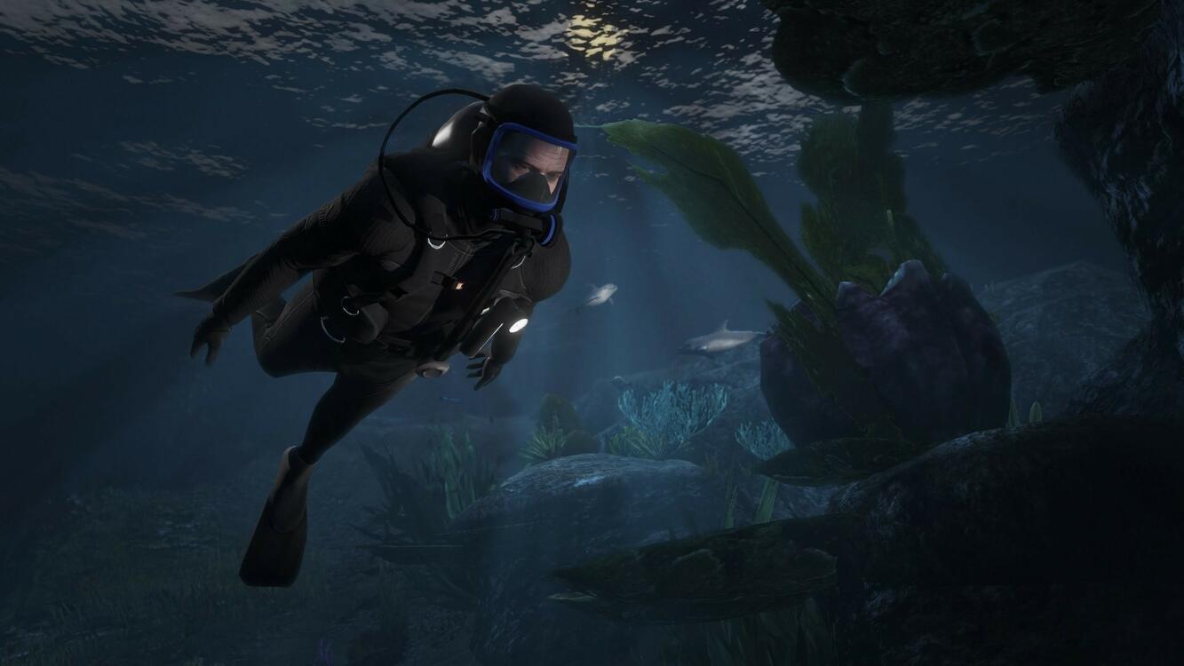Фото видеоигры подводный дайверов - бесплатные картинки на Fonwall