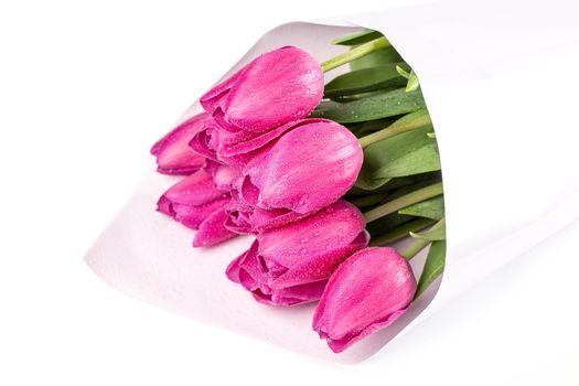 Фото бесплатно цветы, букеты, тюльпаны