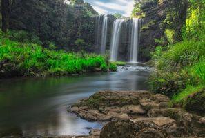 Бесплатные фото Новая Зеландия,Скандинавский полуостров,Водопад Фангареи,Whangarei Falls,речка,деревья,камни