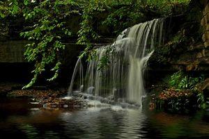 Бесплатные фото река, лес, деревья, природа, водопад, пейзаж
