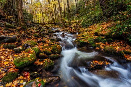 Screensaver autumn waterfall