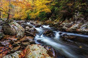 Заставки Smoky Mountains National Park, Грейт Смоки Маунтинс Парк, штат Теннесси, осень, лес, река, деревья, камни, мох, природа