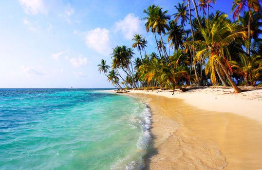 Заставки тропики, море, пляж