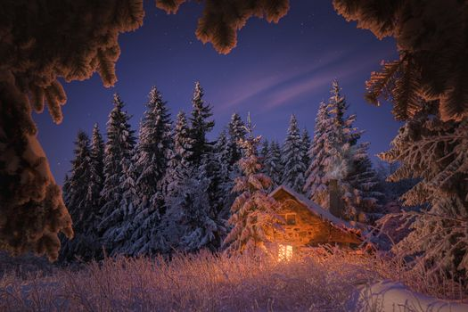 Fabulous cabin in the winter forest