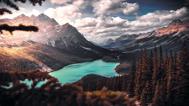 Photo free picturesque, trees, lake