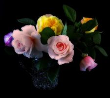 Photo free roses, bouquet, vase