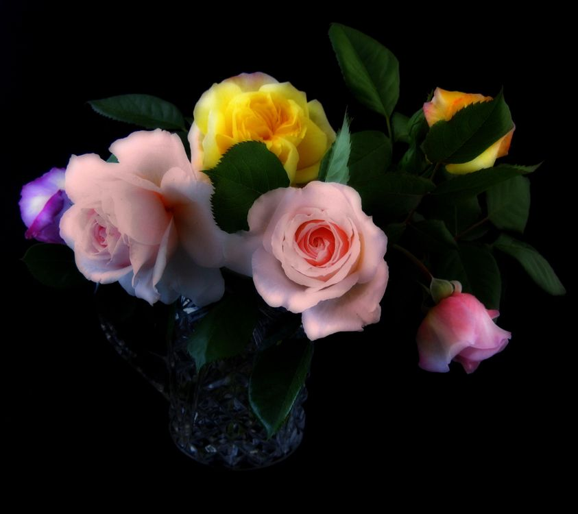 Photos for free roses, bouquet, vase - to the desktop