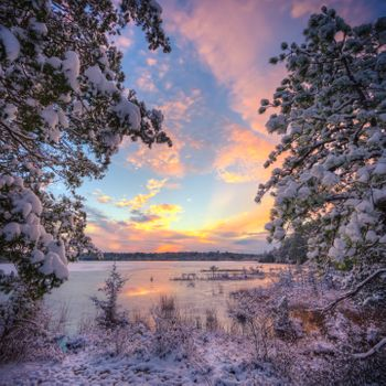 Фото бесплатно Стаффорд Фордж область управления дикой природой, Нью-Джерси, зима