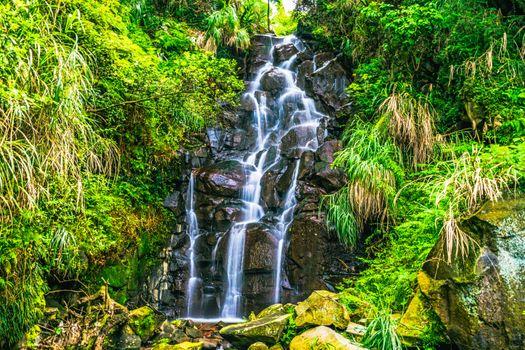 Photo free landscape, vegetation, stones