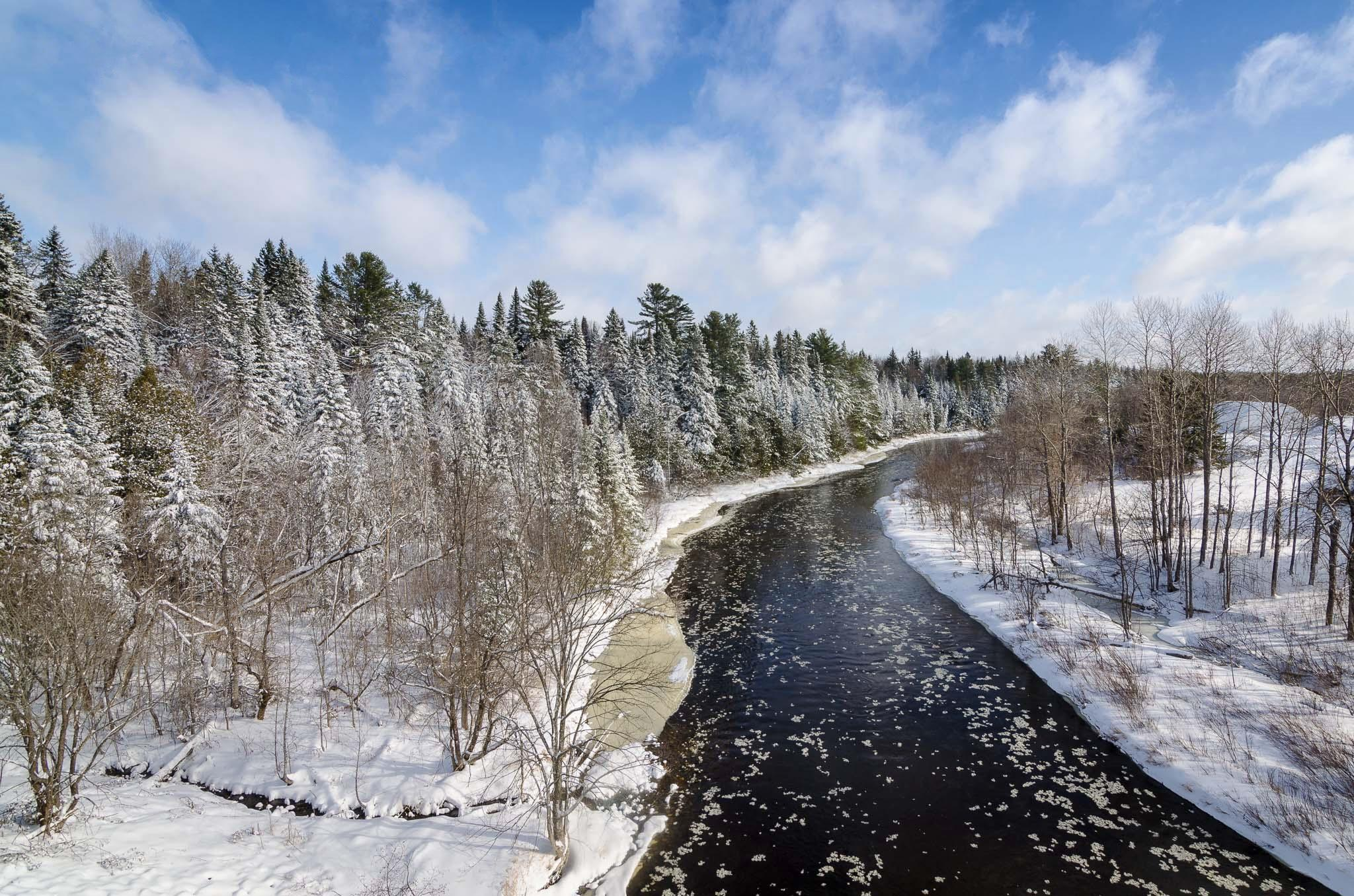Обои зима, река, лес, деревья