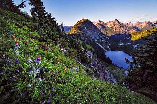 Фото бесплатно пейзаж, озеро анн, скагит