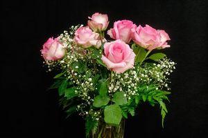 Бесплатные фото розы,букет,чёрный фон,цветы,флора