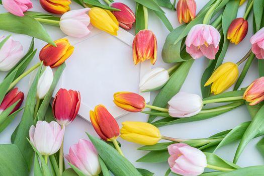 Фото бесплатно жёлтые цветы, желтый, розовый цвет