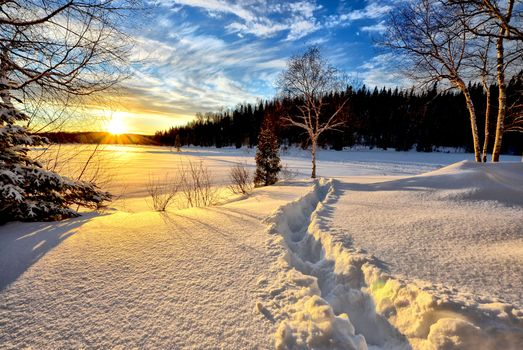 зимний пейзаж · бесплатное фото