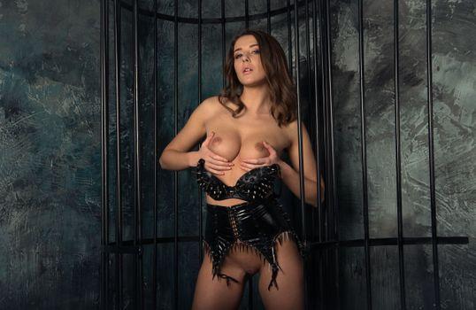 Бесплатные фото sybil kailena,sybille y,sybil a,kailena,davina e,брюнетка,модель,сексуальность,сиськи,киска,бритая киска,handbra