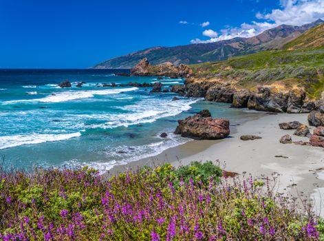 Фото бесплатно природа, США, океан