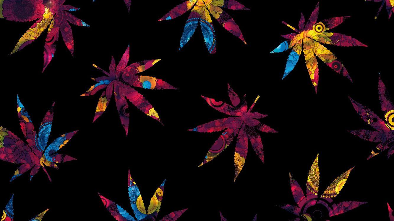 Фото листья цифровое искусство растения - бесплатные картинки на Fonwall