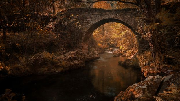 Photo free old bridge, river, autumn