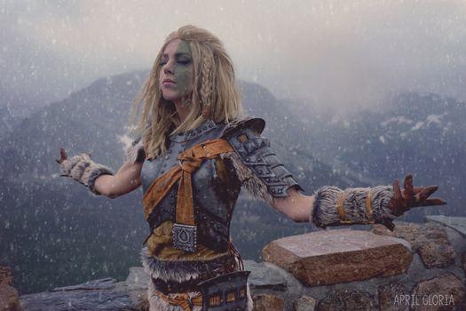 The Elder Scrolls V: Skyrim · free photo