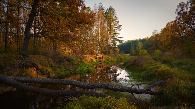 Photo free river, autumn, fall