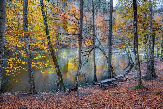 Photo free a place of rest, autumn colors, autumn