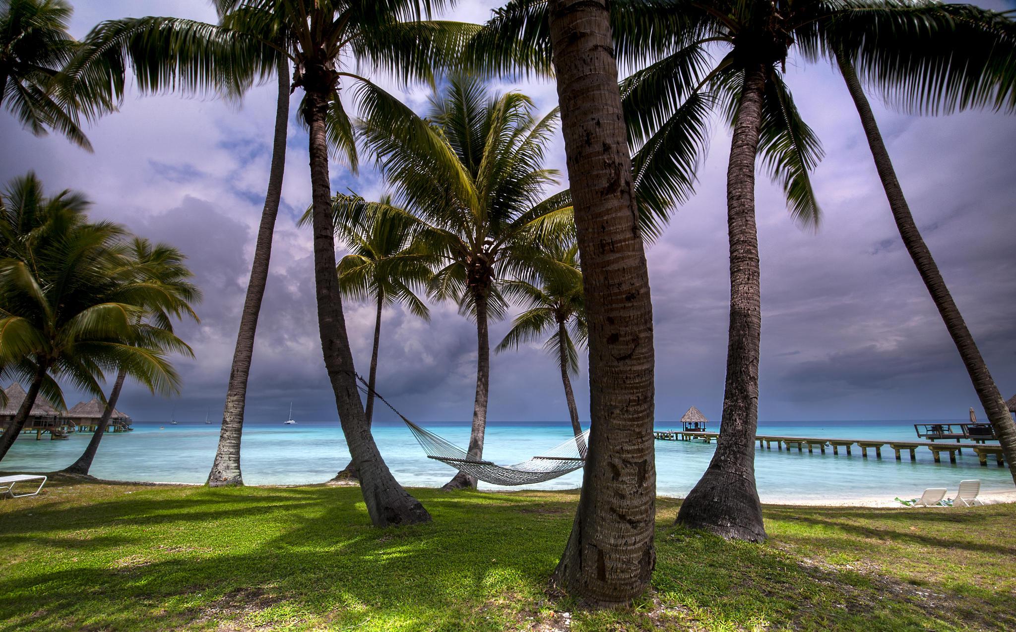 Rangiroa, Tuamotu Islands, French Polynesia  № 7026 загрузить