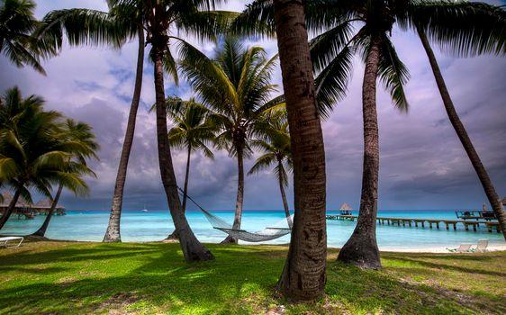 Фото бесплатно Пляж Киа Ора, Французская Полинезия, море