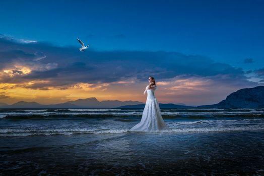 Фото бесплатно Seagull, закат, девушка