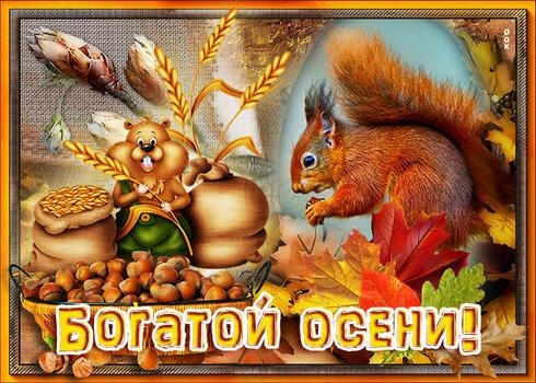 Postcard free a rich autumn, squirrel, nuts