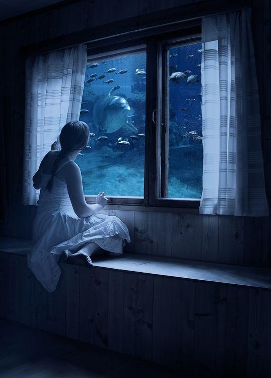 Фото бесплатно девушка, окно, море, рыбы, фантастика, art - на рабочий стол