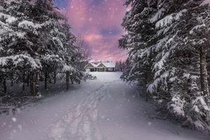 Бесплатные фото зима,снег,сугробы,лес,деревья,дорога,дом
