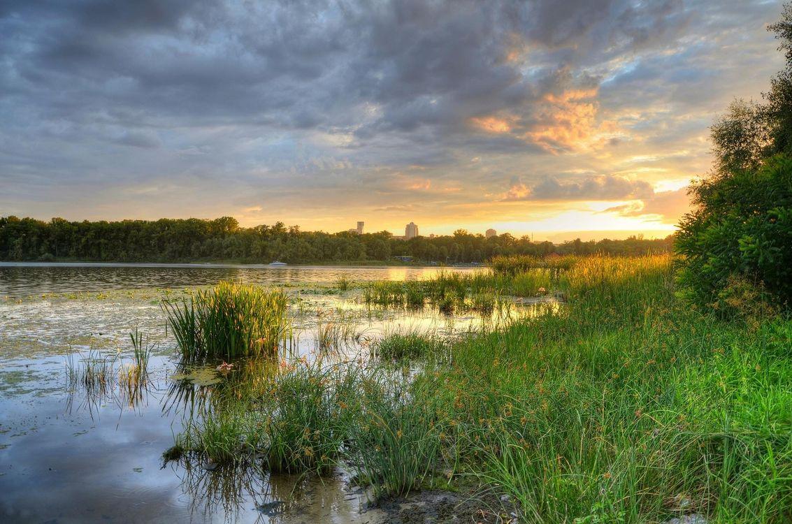 Фото бесплатно заводь, Днепр, Киев, Украина, закат, река, деревья, пейзаж, пейзажи