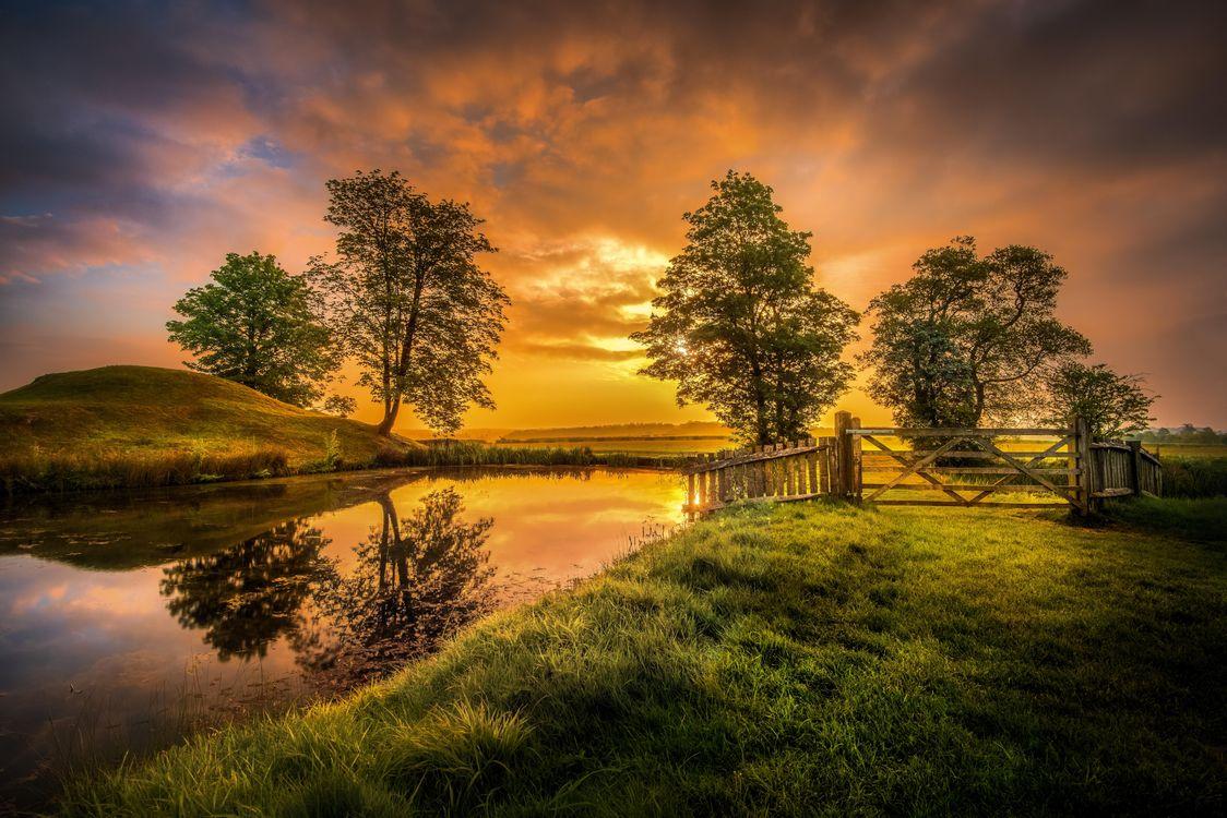 Фото бесплатно закат, поле, пруд - на рабочий стол