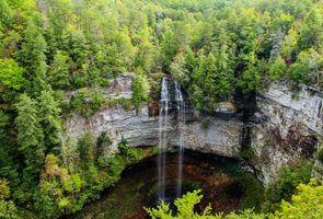 Заставки деревья, водопад, Falls Creek Falls State Park
