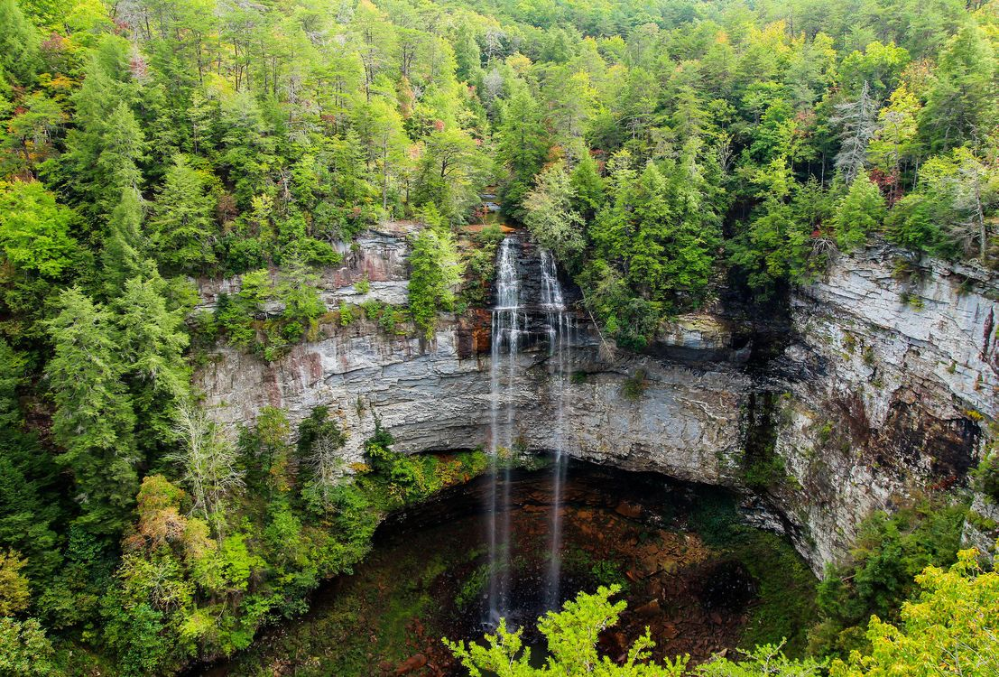 Фото бесплатно деревья, водопад, Falls Creek Falls State Park - на рабочий стол