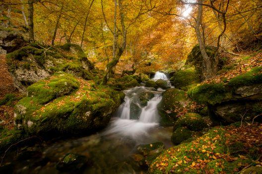 Photo free landscape, autumn, autumn waterfall
