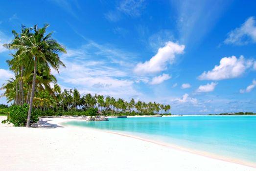 Бесплатные фото тропики,Мальдивы,море,пляж