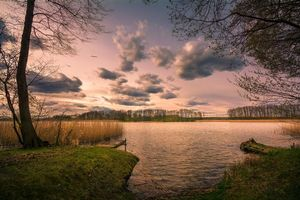 Бесплатные фото закат,озеро,деревья,мостик,причал,небо,облака