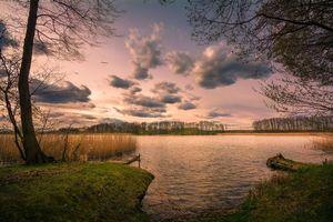 Photo free sunset, lake, trees