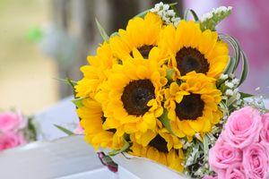 Бесплатные фото свадебные цветы, свадьба, красивый цветок, помолвленный, брак, создание семьи, невеста