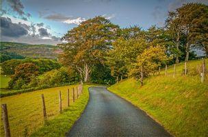 Бесплатные фото осень,дорога,деревья,горы,холмы,пейзаж