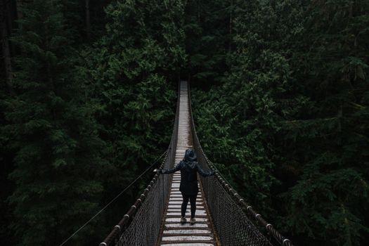 Photo free bridge, trees, girl