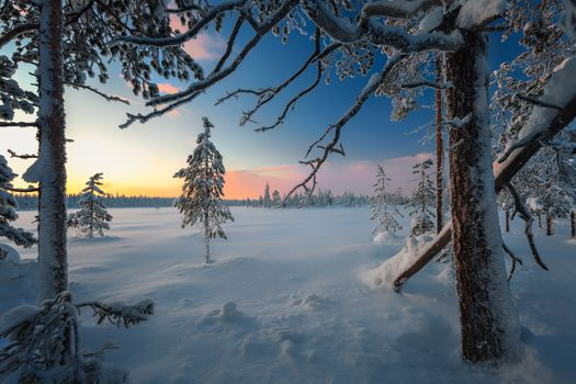 Photo free The surroundings of the city of Apatity, winter, snow