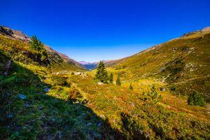 Фото бесплатно Альпы, природа, луг