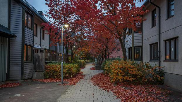 Фото бесплатно осень, опавшие листья, город